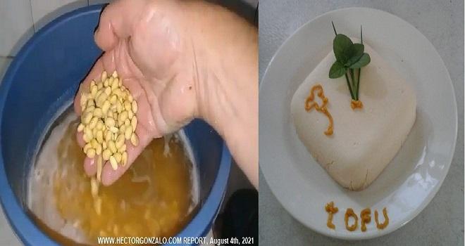 1025.08 Argentina Salta Ing Cabrera Kohl Portal Vegania Salta Como elaborar el tofu de soja