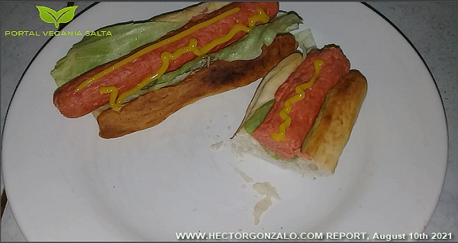 1025.19 Argentina Salta Ing Cabrera Kohl Portal Vegania Salta Vegan sausages complete process