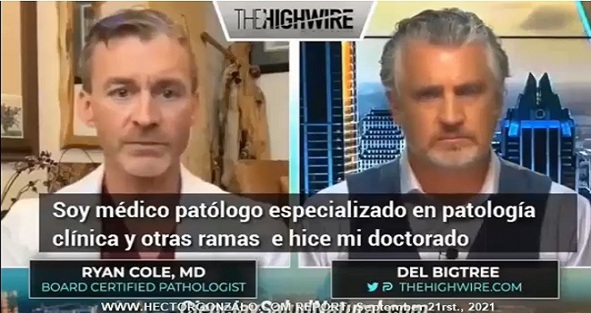 1088.01 United States of America TheHighwire Del BigTree Interview Ryan Cole MD Board Certified Pathologist D Dimero test